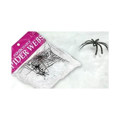 pajęczyna z pająkami- biała
