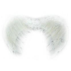 Skrzydła z piór Aniołka- Q1