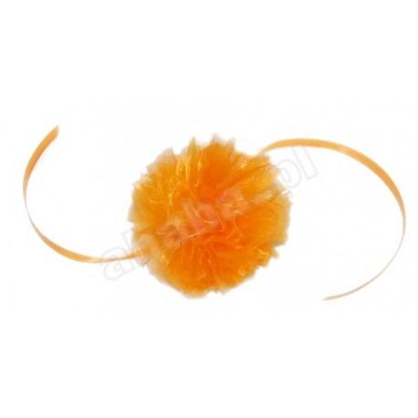 Pompon pomarańczowy