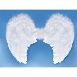 Skrzydła anioła, białe, 80 x 60cm