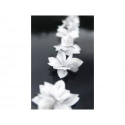 Kwiatki białe z dżetem