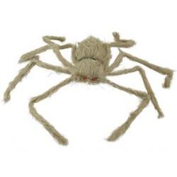 włochaty pająk z czerwonymi oczami