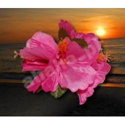 Kwiaty do włosów- hibiskusy